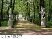 Купить «Санкт-Петербург, Летний сад», фото № 55347, снято 20 мая 2007 г. (c) Александр Секретарев / Фотобанк Лори