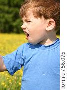 Купить «Ребенок в цветах кричит», фото № 56075, снято 10 июня 2006 г. (c) Останина Екатерина / Фотобанк Лори