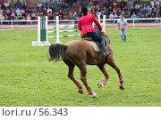 Купить «Соревнования по конкуру», фото № 56343, снято 14 мая 2006 г. (c) Лисовская Наталья / Фотобанк Лори