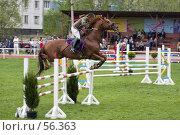 Купить «Соревнования по конкуру: прыжок через барьер», фото № 56363, снято 14 мая 2006 г. (c) Лисовская Наталья / Фотобанк Лори