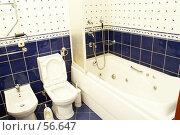 Купить «Интерьер. ванная», фото № 56647, снято 2 ноября 2006 г. (c) Ирина Мойсеева / Фотобанк Лори