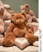 Купить «Коричневый медведь Тедди», фото № 56747, снято 16 августа 2005 г. (c) Александр Чермянин / Фотобанк Лори