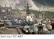 Купить «Порт в Новороссийске», фото № 57447, снято 23 сентября 2018 г. (c) Морозова Татьяна / Фотобанк Лори