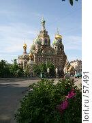 Купить «Санкт-Петербург, Собор Спаса на Крови», фото № 57491, снято 6 июня 2007 г. (c) Александр Секретарев / Фотобанк Лори