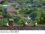 Купить «Голуби на крыше», фото № 59867, снято 2 июня 2007 г. (c) Алексей Судариков / Фотобанк Лори