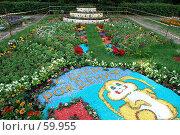 Купить «Клумба», фото № 59955, снято 5 июля 2007 г. (c) Дмитрий Карасев / Фотобанк Лори
