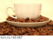 Купить «Белая чашка с кофейными зернами стоит на кофейных зернах», фото № 60087, снято 3 ноября 2006 г. (c) Останина Екатерина / Фотобанк Лори