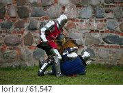 Купить «Рыцари. Knights», фото № 61547, снято 2 января 2007 г. (c) Морозова Татьяна / Фотобанк Лори