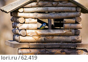 Купить «Домик-кормушка для птиц», фото № 62419, снято 28 марта 2007 г. (c) Argument / Фотобанк Лори