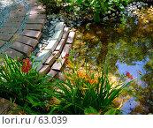 Купить «Декоративный прудик в саду. Ландшафтный дизайн.», фото № 63039, снято 17 июля 2007 г. (c) Тим Казаков / Фотобанк Лори
