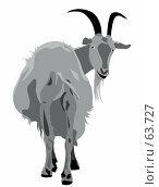 Купить «Коза на белом фоне», иллюстрация № 63727 (c) Сергей Лаврентьев / Фотобанк Лори