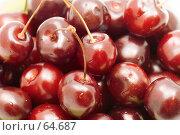 Купить «Красная вишня», фото № 64687, снято 16 июля 2018 г. (c) Угоренков Александр / Фотобанк Лори