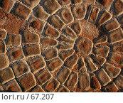 Купить «Брусчатка, выложенная кругом под ярким вечерним солнцем», фото № 67207, снято 7 июля 2004 г. (c) Harry / Фотобанк Лори
