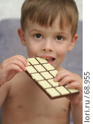 Купить «Симпатичный мальчик кусает вкусную шоколадке», фото № 68955, снято 5 августа 2007 г. (c) Останина Екатерина / Фотобанк Лори