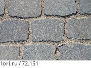 Купить «Тротуарная плитка», фото № 72151, снято 22 июля 2007 г. (c) Александр Чермянин / Фотобанк Лори
