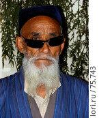 Купить «Пожилой мужчина азиатской национальности с седой бородой в синем халате и тюбетейке», фото № 75743, снято 26 июля 2007 г. (c) Ashot  M.Pogosyants / Фотобанк Лори