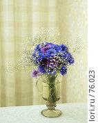 Купить «Букет васильков в стакане на столе», фото № 76023, снято 22 мая 2018 г. (c) Игорь Соколов / Фотобанк Лори