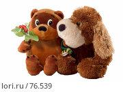 Купить «Две плюшевые игрушки», фото № 76539, снято 9 августа 2007 г. (c) Влад Нордвинг / Фотобанк Лори