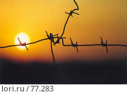 Купить «Закат за колючей проволокой», фото № 77283, снято 21 сентября 2018 г. (c) Александр Чураков / Фотобанк Лори