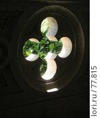 Купить «Орнамент в виде креста», эксклюзивное фото № 77815, снято 29 июля 2007 г. (c) Михаил Карташов / Фотобанк Лори