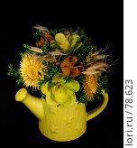 Купить «Сухие цветы», фото № 78623, снято 29 августа 2007 г. (c) Анатолий Теребенин / Фотобанк Лори