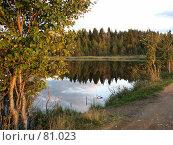 Берег лесного озера. Стоковое фото, фотограф Юрий Драгунов / Фотобанк Лори