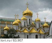 Купить «Московский Кремль. Благовещенский собор.», фото № 83907, снято 21 июля 2006 г. (c) Бугаева Вероника Владимировна / Фотобанк Лори