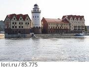 Купить «Этнографический комплекс «Рыбная деревня»», фото № 85775, снято 6 сентября 2007 г. (c) Parmenov Pavel / Фотобанк Лори