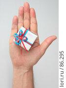 Купить «Небольшой упакованный подарок, лежащий на мужской ладони», фото № 86295, снято 22 июня 2007 г. (c) Harry / Фотобанк Лори