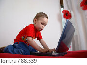 Купить «Маленький мальчик учится работать на ноутбуке», фото № 88539, снято 4 июня 2007 г. (c) Harry / Фотобанк Лори
