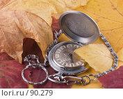 Купить «Переход на зимнее время», фото № 90279, снято 30 сентября 2007 г. (c) Ермилова Арина / Фотобанк Лори