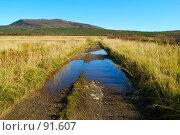 Купить «Дорога по лужам», фото № 91607, снято 29 сентября 2007 г. (c) Валерий Александрович / Фотобанк Лори