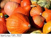 Купить «Тыквы. Фон.», фото № 91707, снято 2 октября 2007 г. (c) Екатерина Соловьева / Фотобанк Лори