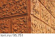 Купить «Красная стена. (Red wall. )», фото № 95751, снято 8 октября 2007 г. (c) Анатолий Теребенин / Фотобанк Лори