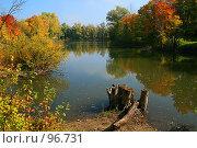 Купить «Отражение цветов   Colors Reflecting», фото № 96731, снято 26 сентября 2007 г. (c) Елена Морозова / Фотобанк Лори
