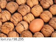Купить «Грецкие орехи и яйцо», фото № 98295, снято 11 октября 2007 г. (c) Владимир Мельник / Фотобанк Лори