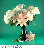Купить «Цветы розовой лилии и белой гортензии в вазе», фото № 98503, снято 11 июля 2007 г. (c) Елена Блохина / Фотобанк Лори