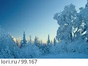 Купить «Синий зимний пейзаж на закате», фото № 99167, снято 5 ноября 2006 г. (c) Ольга Красавина / Фотобанк Лори