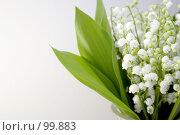 Купить «Ландыши», фото № 99883, снято 27 мая 2007 г. (c) Asja Sirova / Фотобанк Лори