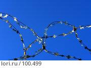 Купить «Спираль из колючей проволоки на фоне синего неба», фото № 100499, снято 21 сентября 2018 г. (c) Александр Тараканов / Фотобанк Лори