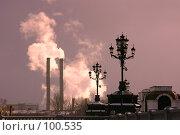 Купить «Уличные фонари у храма Христа Спасителя и дымящиеся заводские трубы вдалеке», фото № 100535, снято 28 ноября 2004 г. (c) Harry / Фотобанк Лори