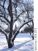 Купить «Солнечный зимний день в парке Коломенское», фото № 101011, снято 11 февраля 2007 г. (c) Astroid / Фотобанк Лори