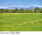 Купить «Русское поле», фото № 102999, снято 19 марта 2019 г. (c) Мирзоянц Андрей / Фотобанк Лори