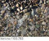 Купить «Мокрая галька на берегу Черного моря», фото № 103783, снято 11 декабря 2018 г. (c) Сергей Сухоруков / Фотобанк Лори