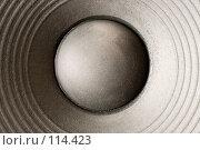 Купить «Диффузор динамической головки», фото № 114423, снято 6 ноября 2007 г. (c) Михаил Мандрыгин / Фотобанк Лори