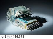 Купить «Пачка денег : теневые доходы», фото № 114891, снято 12 сентября 2007 г. (c) Ирина Мойсеева / Фотобанк Лори