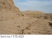 Купить «Следы на песке», фото № 115023, снято 3 августа 2007 г. (c) Т.Кожевникова / Фотобанк Лори