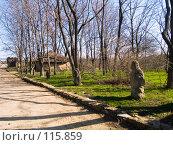 Купить «Аллея в музее-заповеднике Танаис», фото № 115859, снято 22 февраля 2007 г. (c) Борис Панасюк / Фотобанк Лори