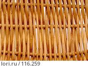 Купить «Плетень», фото № 116259, снято 5 ноября 2007 г. (c) Анатолий Теребенин / Фотобанк Лори