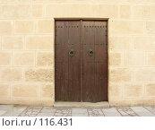 Купить «Коричневая дверь.г.Сусс.Тунис», фото № 116431, снято 19 сентября 2007 г. (c) Колчева Ольга / Фотобанк Лори